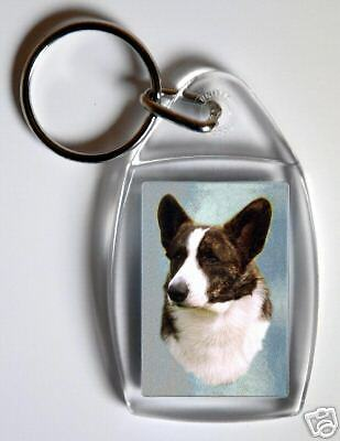 Notepad By Starprint Border Collie Notebook Auto combined postage